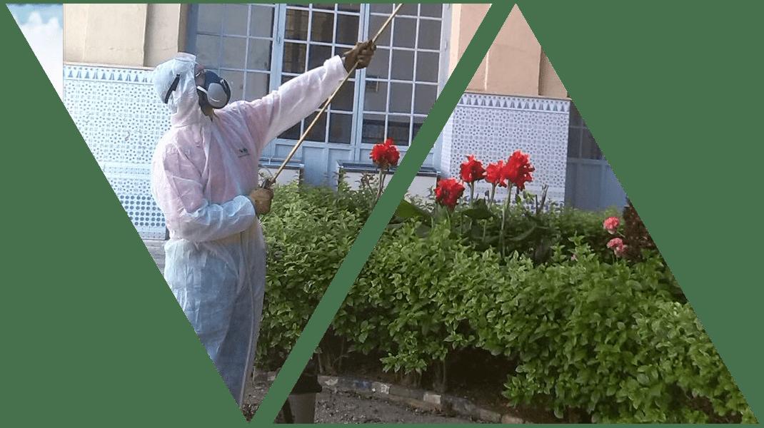 servicio-de-desinfeccion-en-malaga